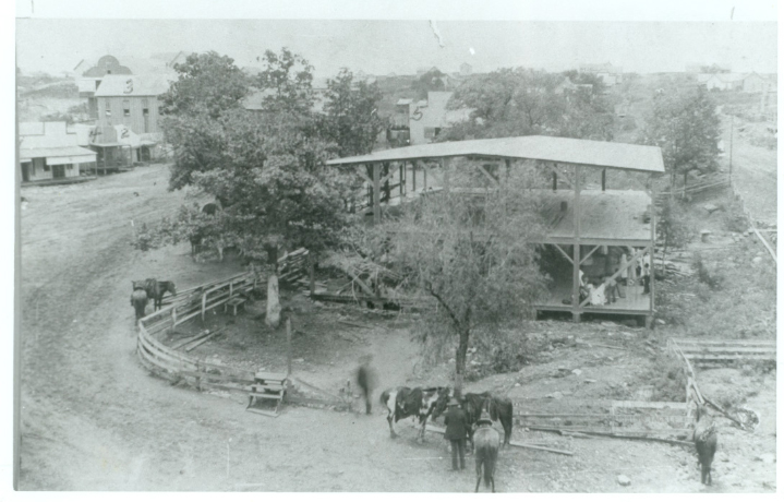 Figure One. Historic Photo of the Former Town of Sulphur Springs, Indian Territory. This community was relocated from its original site in order to create the Chickasaw National Recreation Area in Murray County, Okalahoma.